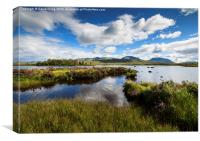 A rare sunny day on Ranoch Moor Scotland, Canvas Print