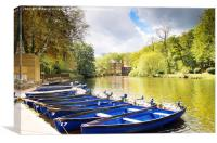 Blue boats on the River Nidd, Canvas Print
