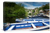 River Nidd, Yorkshire, Canvas Print