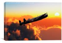Evening flight, Canvas Print