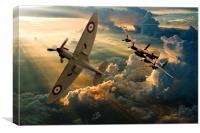 fighter escort, Canvas Print