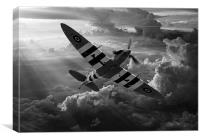 D-Day Defender, Canvas Print