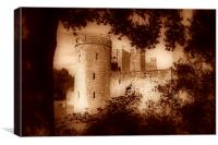 A view of Bodiam Castle through the trees, Canvas Print