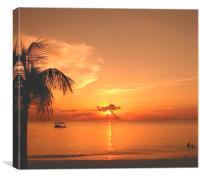 Evening Swim, Canvas Print