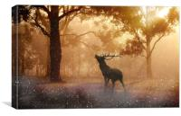 Call of the Wild, Canvas Print