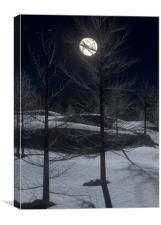Full Moon Mid Winter, Canvas Print