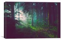 Mystic Light Beams., Canvas Print