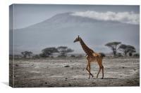 Giraffe and Volcano, Canvas Print