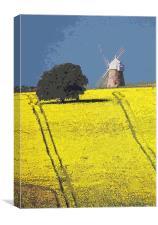 Halnaker windmill, Sussex, Canvas Print