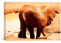 Young elephant playing alone, Canvas Print