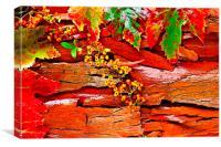 Colorful autumn leaves, Canvas Print