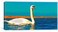 A beautiful swan on the lake , Canvas Print