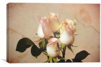 Vintage roses, Canvas Print