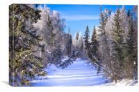 Frozen river, Canvas Print