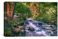 Mountain river, Canvas Print