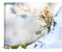 Halo in Caucasian ridge, Canvas Print