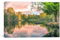 Forest Silence, Canvas Print