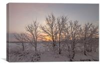 Sunrise with Snowing, Canvas Print