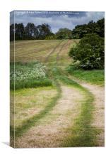 Farm Tracks, Canvas Print