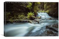 Goitstock MIll Waterfall , Canvas Print