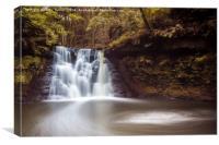 Goitstock Waterfall, Canvas Print