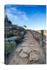 To Hingcliff Common, Canvas Print