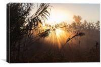 Misty morning  I, Canvas Print
