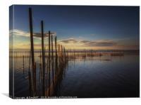Lake Albufera, Canvas Print