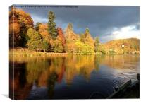 Autumn on the Tay, Canvas Print