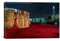 Poppies at the Tower of London, Engla, Canvas Print