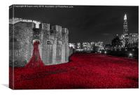 Poppies at the Tower of London, England, Canvas Print