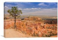Bryce Canyon, Utah USA, Canvas Print