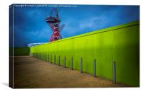 Olympic Lime, Canvas Print