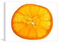 Orange cross section, Canvas Print