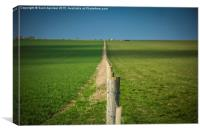 Endless Fence, Canvas Print