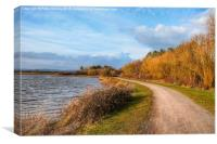 Llanelli Cycle Track, Canvas Print