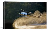 Taking off, Canvas Print