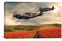Spitfire over poppiefield, Canvas Print
