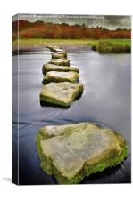 Stepping stones of life, Canvas Print