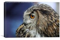 Eagle Owl II, Canvas Print