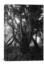 Gothic Woods I, Canvas Print
