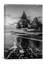 Bear's Beach IX, Canvas Print