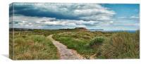 Footpath to Hengistbury Head, Canvas Print