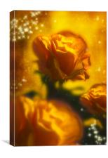 Golden Roses, Canvas Print