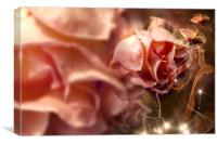 Peach Rose and Butterfly, Canvas Print