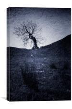 Mystery Tree, Canvas Print