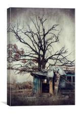 Abandoned house, Canvas Print