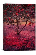Bleeding Tree, Canvas Print