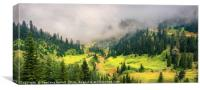 Sunny Valley, Canvas Print