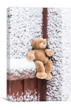 Teddy Bear, Canvas Print